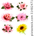 Set of greeting cards with defferent flowers.  31482471