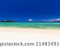 해변, 바다, 풍경, 오키나와. 31483491