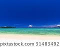 해변, 바다, 풍경, 오키나와. 31483492
