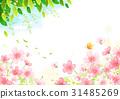 和平 景色 春天 31485269