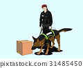 動物 狗 狗狗 31485450