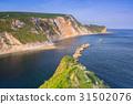 Beautiful beach on Jurassic Coast of Dorset, UK 31502076