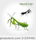Green Mantis Vector 31504481