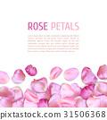 Pink Rose petals border 31506368