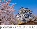 Hikone Castle in Spring 31506373
