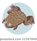 xenopus, frog, laevis 31507849