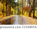Autumn landscape in the forest with old road 31508656