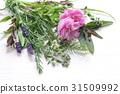 芳香 药物疗效 炼油 31509992