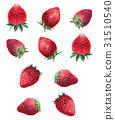 strawberries, strawberry, fruit 31510540