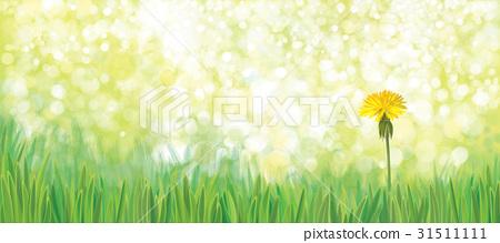 Vector  yellow  dandelion nature  background. 31511111