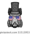 Aper, boar, hog, hog, wild boar wearing cylinder 31513953