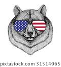 Black bear American bear Hand drawn illustration 31514065