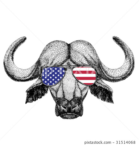 Buffalo, bull, ox Hand drawn illustration for 31514068