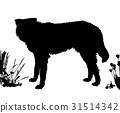 Dog stands sideways. Black silhouette isolated 31514342