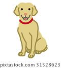 dog, dogs, labrador retriever 31528623
