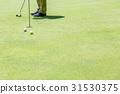 高爾夫球場 高爾夫 球 31530375