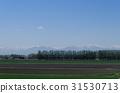 Field of Tokachi 31530713