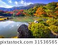 arashiyama, autumn, kyoto 31536565