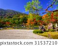 arashiyama, autumn, fall 31537210
