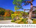 arashiyama, autumn, fall 31537211