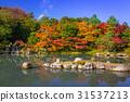 arashiyama, autumn, fall 31537213
