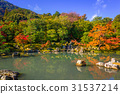 arashiyama, autumn, kyoto 31537214