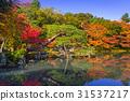 arashiyama, autumn, fall 31537217