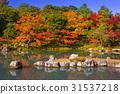 arashiyama, autumn, kyoto 31537218