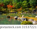 arashiyama, autumn, kyoto 31537221