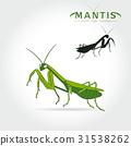 Green Mantis Vector 31538262