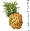 水果 菠蘿 鳳梨 31542798