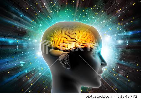 Man head showing the human brain 31545772