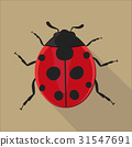 Ladybug isolated flat style, vector illustration. 31547691