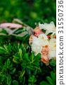 Wedding bouquet on the grass 31550736