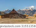 Moulton Barn Grand Teton National Park 31551358