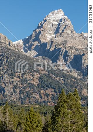 Teton Autumn Scenic 31551962
