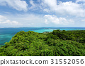 오키나와, 바다, 자연 31552056