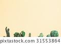 cactus, green, creative 31553864
