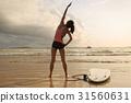 surf Board Beach 31560631