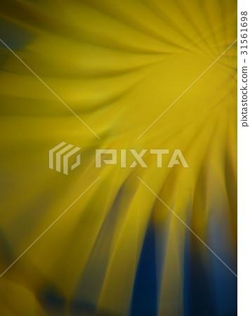 抽象迷離的光 31561698