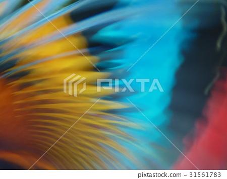 抽象迷離的光 31561783