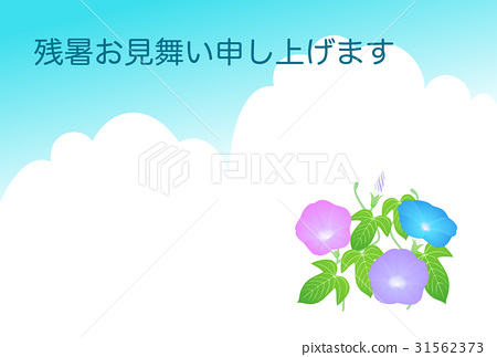 Late summer greeting card morning glory japanese morning glory late summer greeting card morning glory japanese morning glory 31562373 m4hsunfo