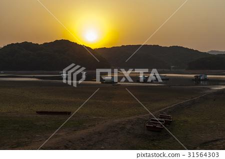 낚시터,고삼저수지,안성시,경기도 31564303