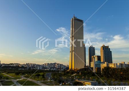 63빌딩,리첸시아,한강시민공원,여의도,영등포구,서울 31564387