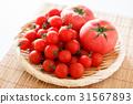 西紅柿 番茄 迷你蕃茄 31567893