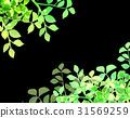 잎, 프레임, 신록 31569259