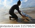 海滩 女性 女 31570629