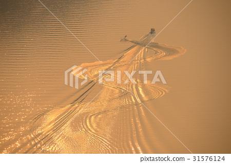 수상스키,금강,세종시,충남 31576124
