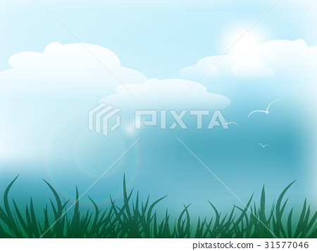 Summer vector design 31577046