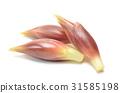 姜mioga 31585198